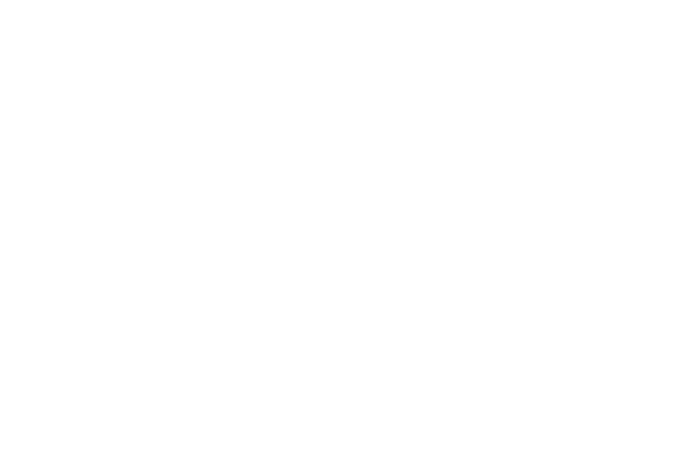 Logo DVN Communication